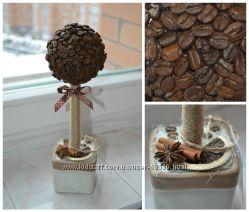 Декоративные кофейные деревья