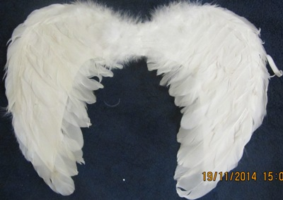 крылья ангелов, бабочек, феи, нимбы