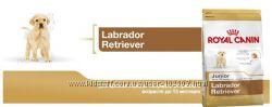 Royal Canin Роял Канин Labrador Retriever Junior 33