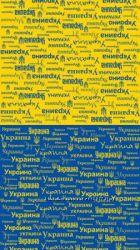 Унікальни баф, маска, з символікою Київ, Львів, Україна, Simons Cat, Сови