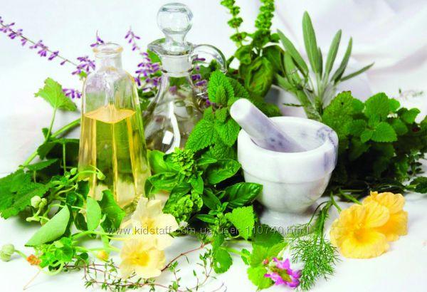Лекарственные травы для похудения