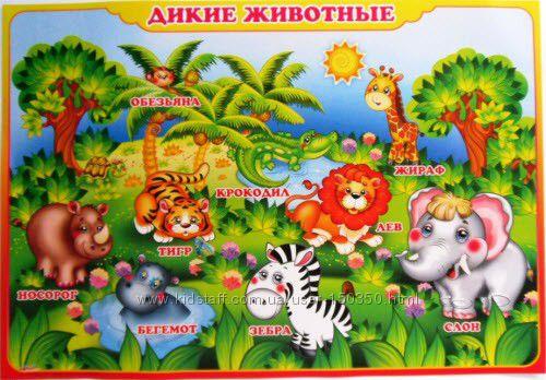 Плакат навчальний на картоні