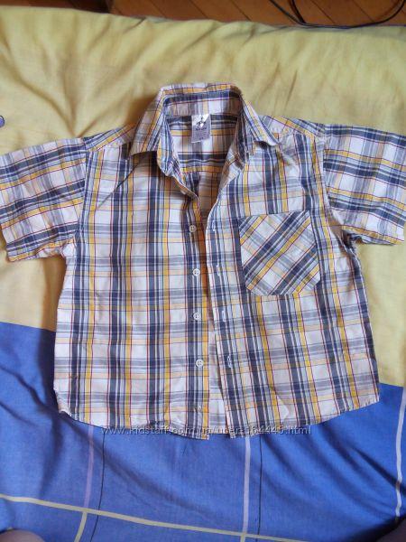 Рубашка Palomino 110 см