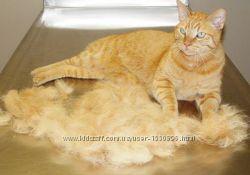 Щетка Фурминатор для кошек и собак