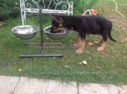 Вольерные миски для собак на штативе, отправляем наложенным