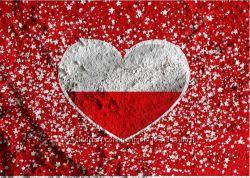 Рабочие польские приглашения страховка и анкета в подарок