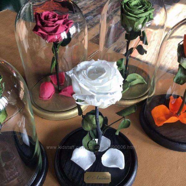Роза в колбе екатеринбург недорого