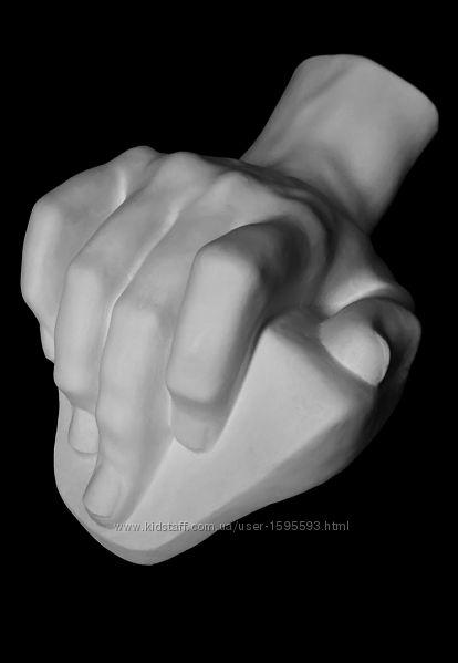 Гипсовая модель кисть руки.