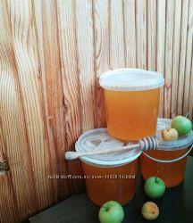 Продам вкусный свежий мед с собственной пасеки Житомирская обл